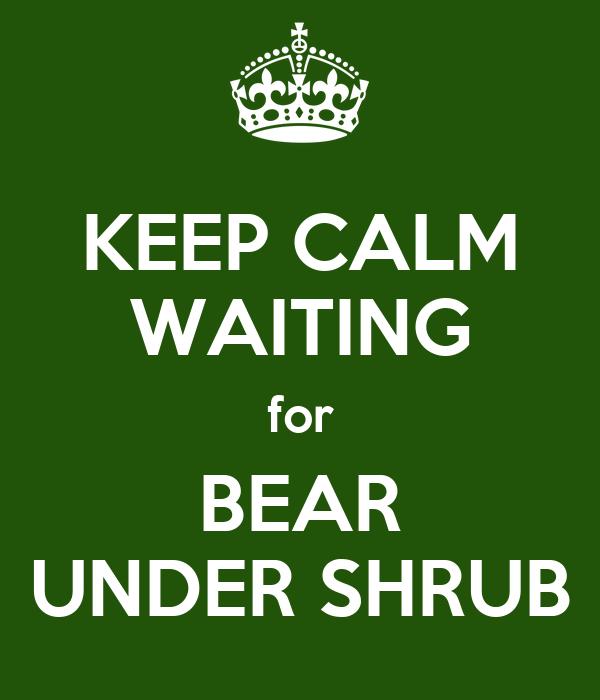 KEEP CALM WAITING for BEAR UNDER SHRUB
