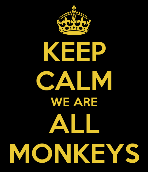 KEEP CALM WE ARE ALL MONKEYS