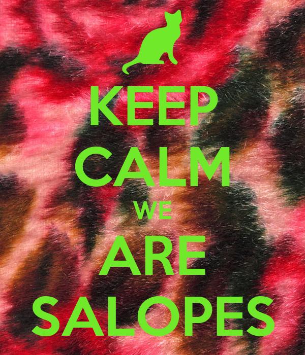 KEEP CALM WE ARE SALOPES