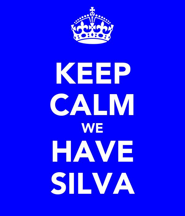 KEEP CALM WE HAVE SILVA