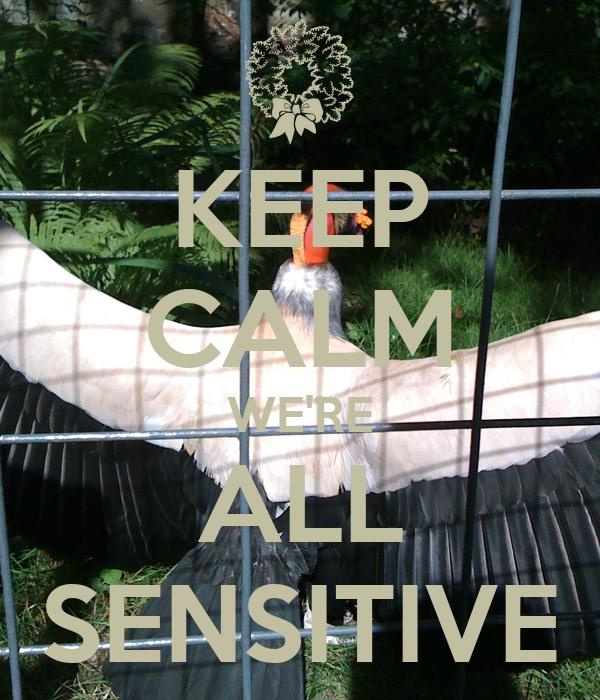 KEEP CALM WE'RE ALL SENSITIVE