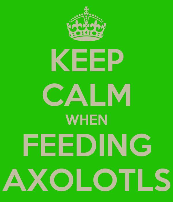 KEEP CALM WHEN FEEDING AXOLOTLS