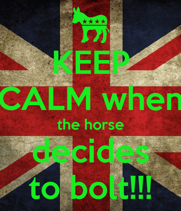 KEEP CALM when the horse decides to bolt!!!