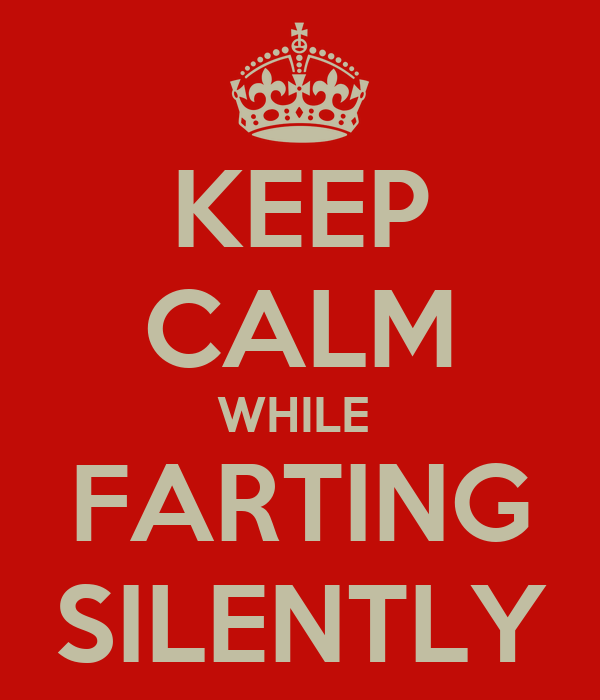 KEEP CALM WHILE  FARTING SILENTLY