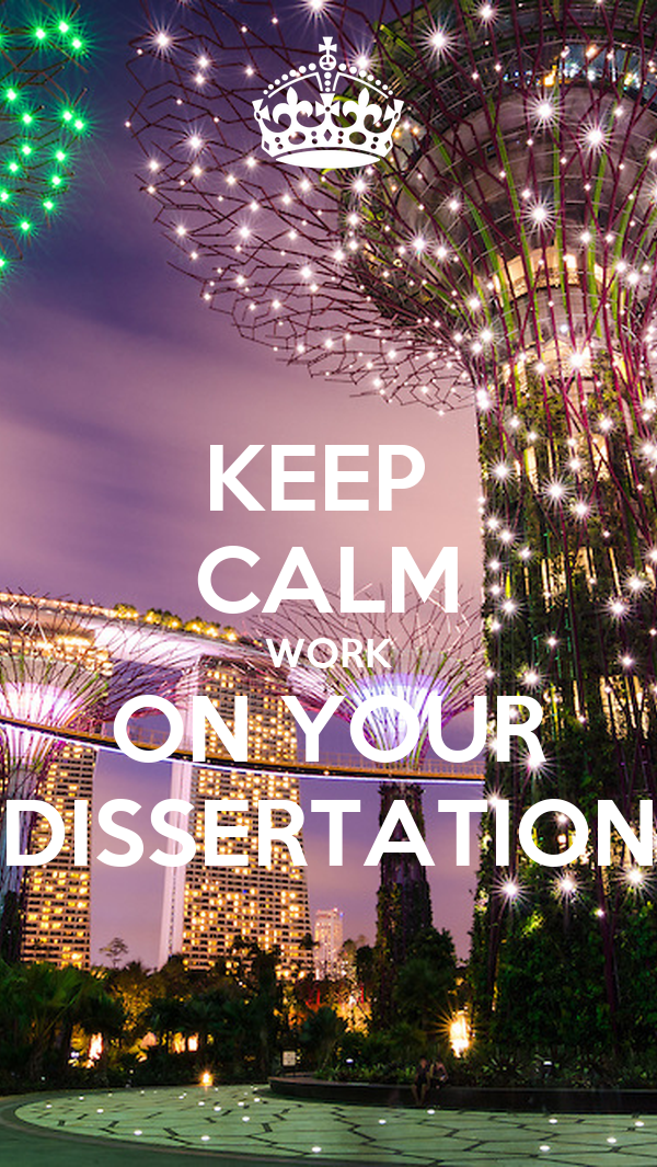 What are the opportunties that came from your dissertation?