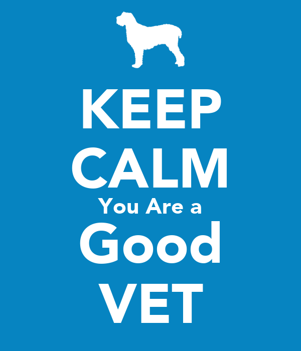 KEEP CALM You Are a Good VET