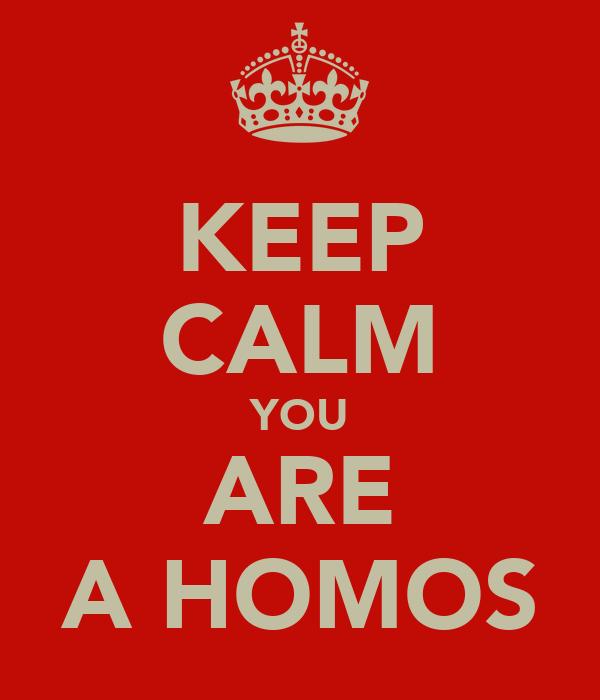 KEEP CALM YOU ARE A HOMOS