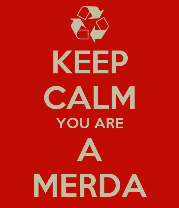 KEEP CALM YOU ARE A MERDA