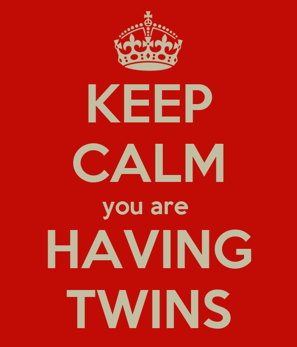 KEEP CALM you are  HAVING TWINS