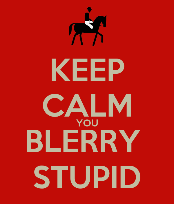 KEEP CALM YOU BLERRY  STUPID