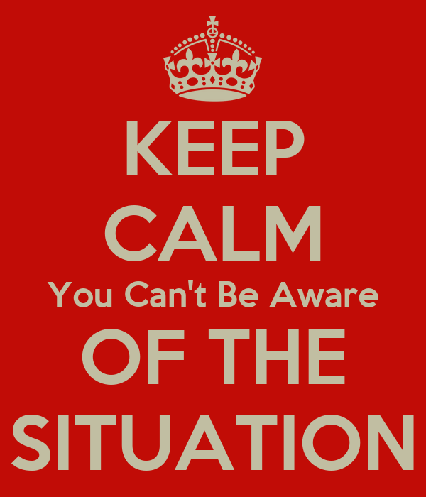 KEEP CALM You Can't Be Aware OF THE SITUATION