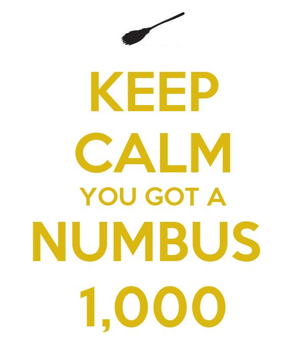 KEEP CALM YOU GOT A NUMBUS  1,000