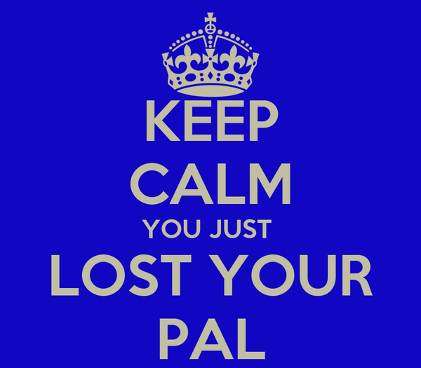 KEEP CALM YOU JUST  LOST YOUR PAL