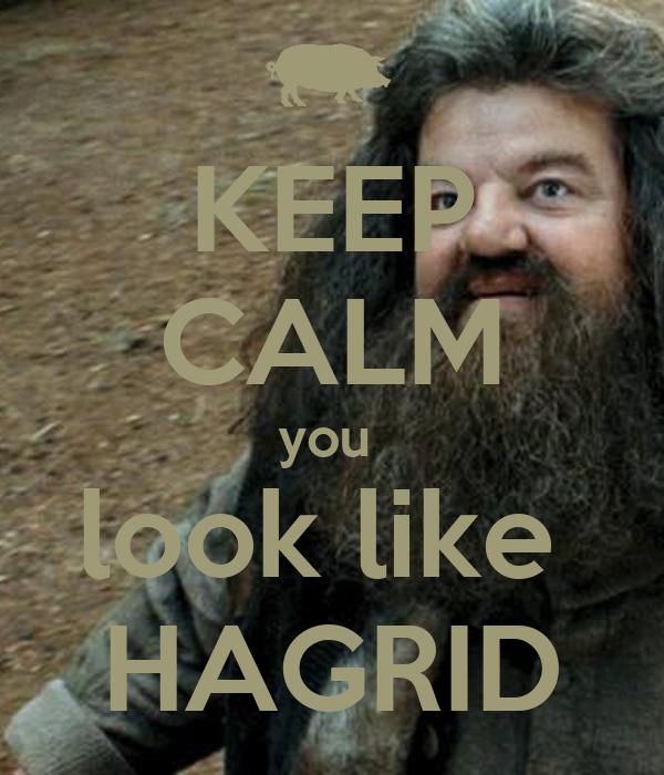 KEEP CALM you  look like  HAGRID