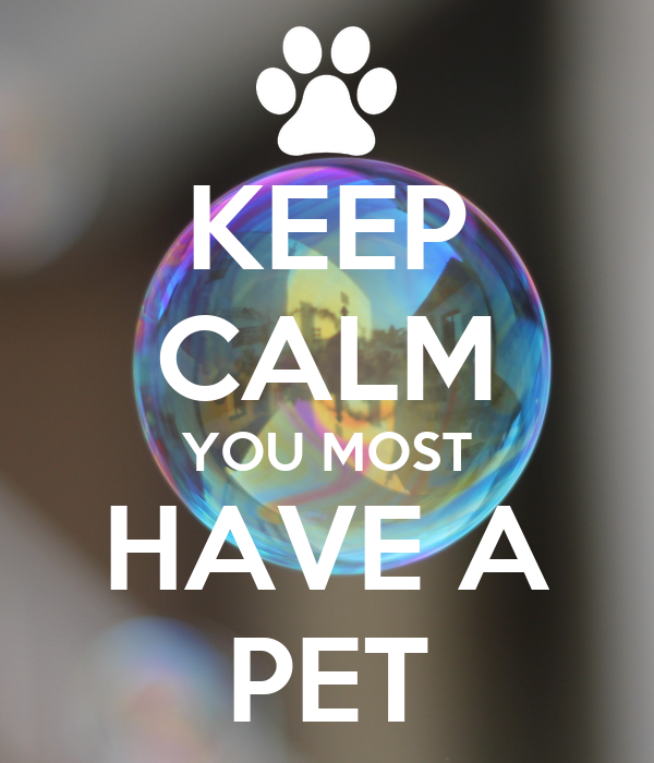 KEEP CALM YOU MOST HAVE A PET