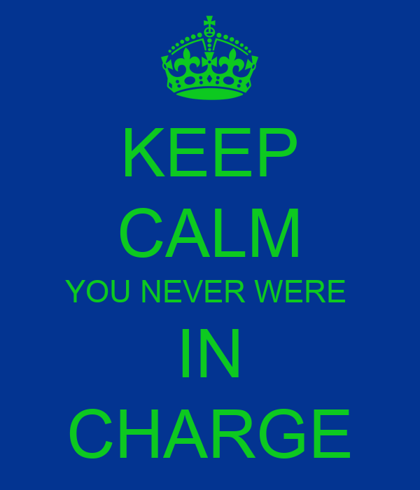 KEEP CALM YOU NEVER WERE  IN CHARGE