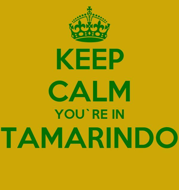 KEEP CALM YOU`RE IN TAMARINDO
