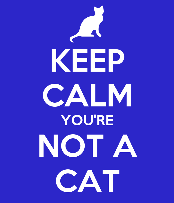 KEEP CALM YOU'RE  NOT A  CAT