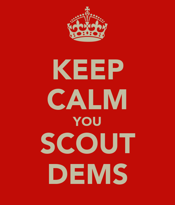 KEEP CALM YOU SCOUT DEMS