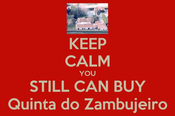 KEEP CALM YOU STILL CAN BUY Quinta do Zambujeiro