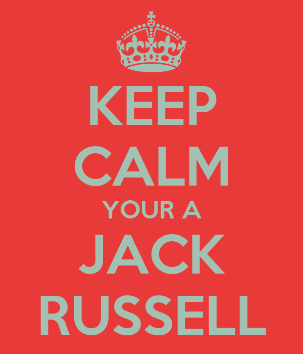 KEEP CALM YOUR A JACK RUSSELL