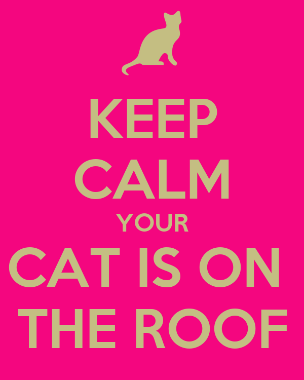 KEEP CALM YOUR CAT IS ON  THE ROOF