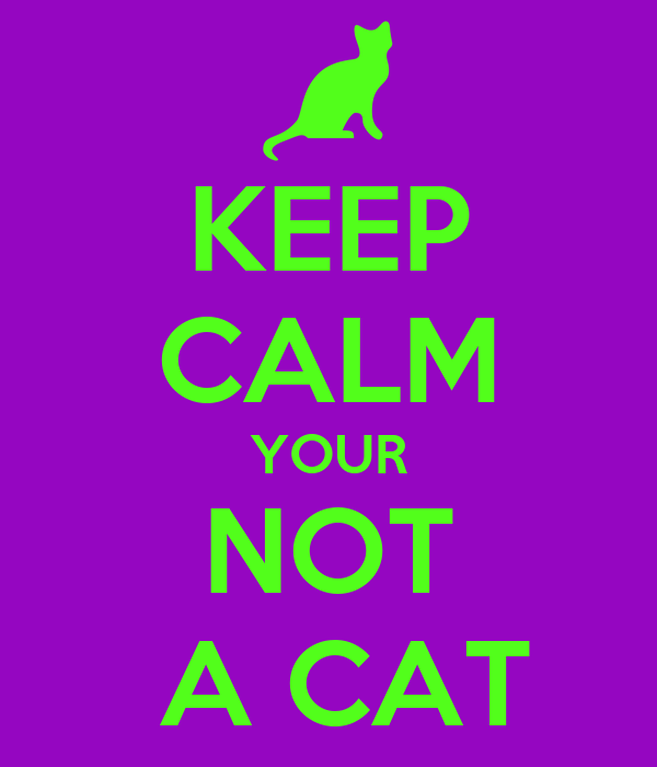 KEEP CALM YOUR NOT  A CAT