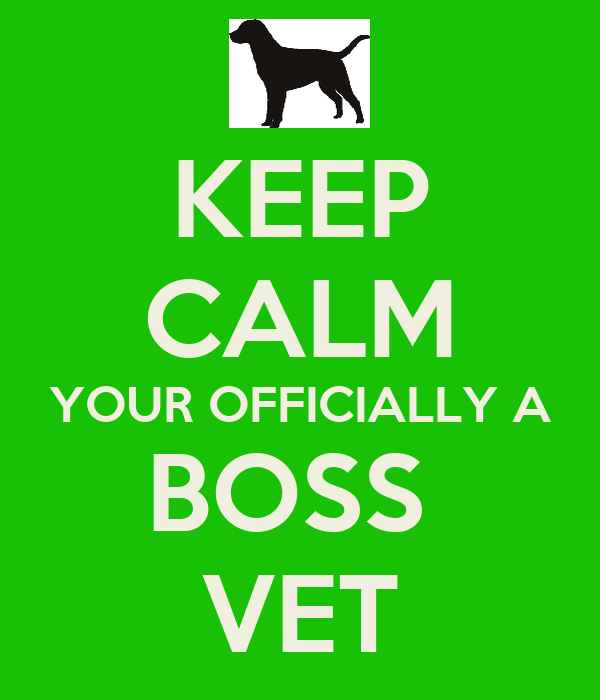 KEEP CALM YOUR OFFICIALLY A BOSS  VET