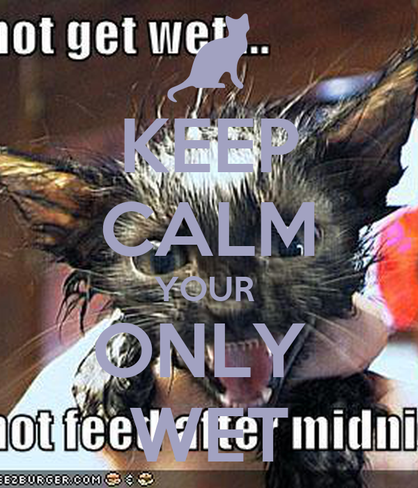 KEEP CALM YOUR  ONLY  WET