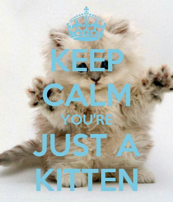 KEEP CALM YOU'RE JUST A KITTEN