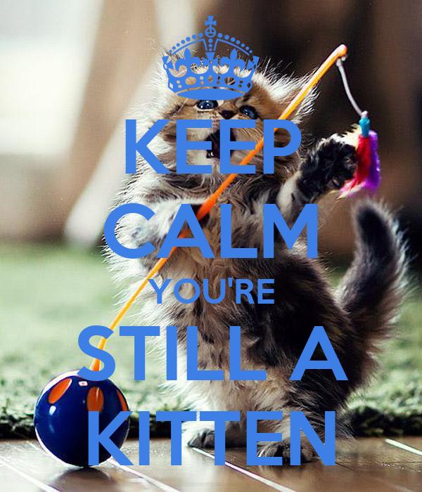 KEEP CALM YOU'RE STILL A KITTEN