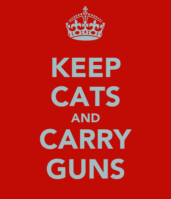 KEEP CATS AND CARRY GUNS