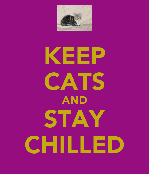 KEEP CATS AND STAY CHILLED