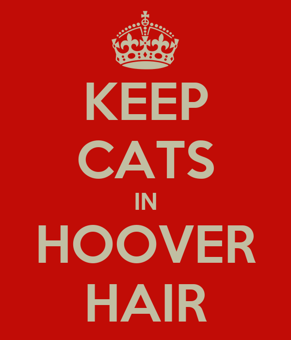 KEEP CATS IN HOOVER HAIR