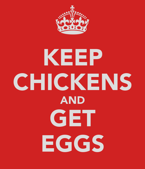 KEEP CHICKENS AND GET EGGS