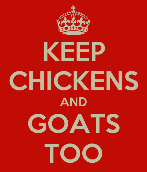 KEEP CHICKENS AND GOATS TOO