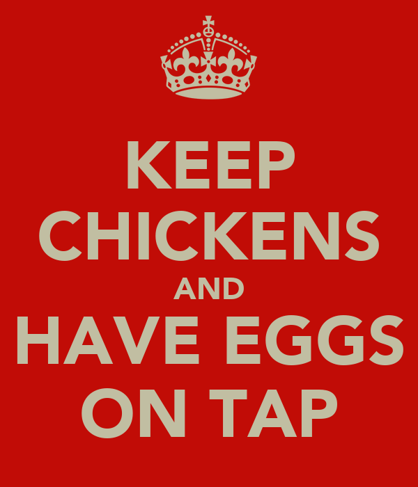 KEEP CHICKENS AND HAVE EGGS ON TAP