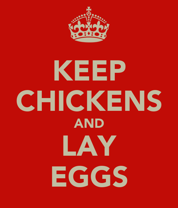 KEEP CHICKENS AND LAY EGGS