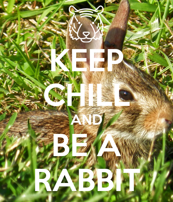 KEEP CHILL AND BE A RABBIT