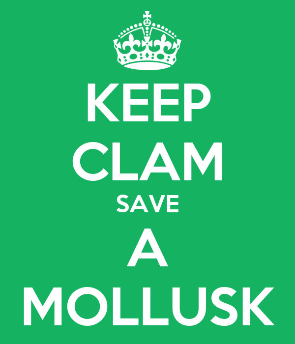 KEEP CLAM SAVE A MOLLUSK