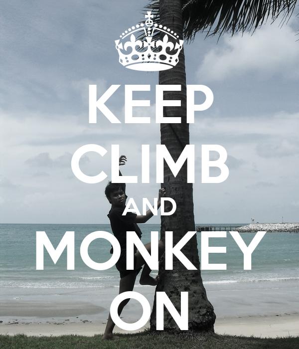 KEEP CLIMB AND MONKEY ON