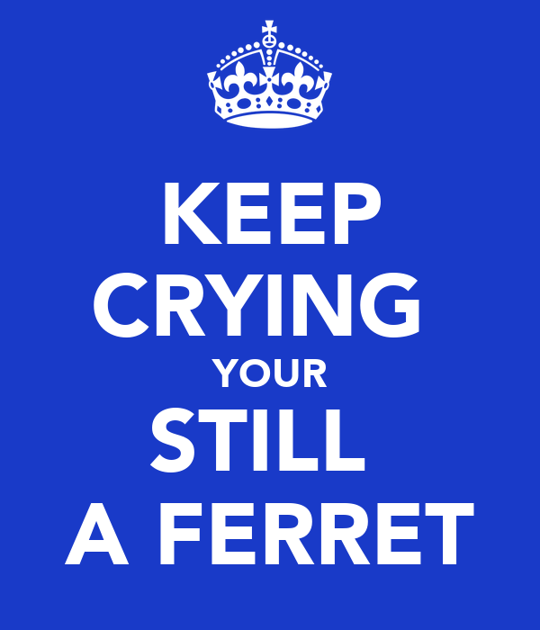 KEEP CRYING  YOUR STILL  A FERRET