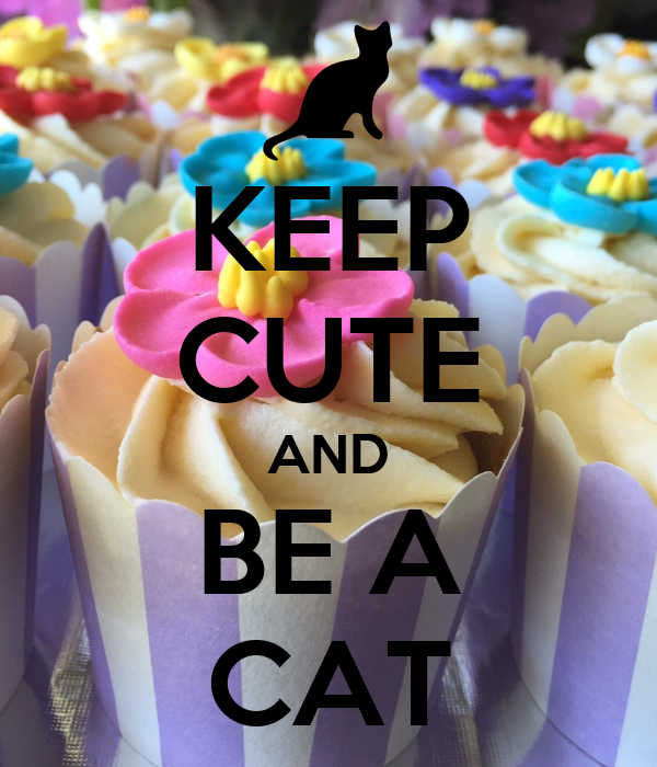 KEEP CUTE AND BE A CAT