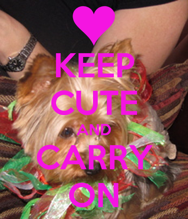 KEEP CUTE AND CARRY ON