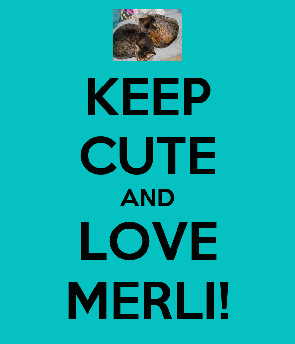 KEEP CUTE AND LOVE MERLI!