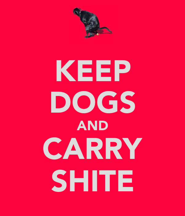 KEEP DOGS AND CARRY SHITE