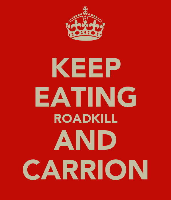 KEEP EATING ROADKILL AND CARRION