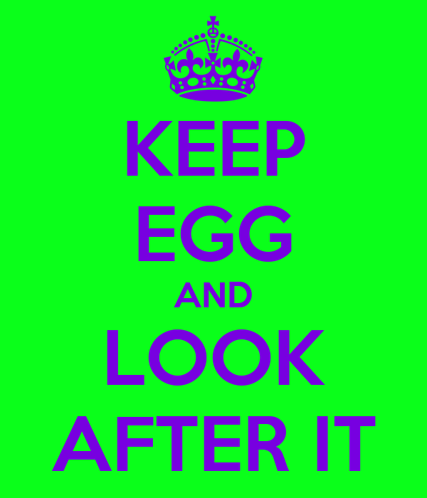 KEEP EGG AND LOOK AFTER IT