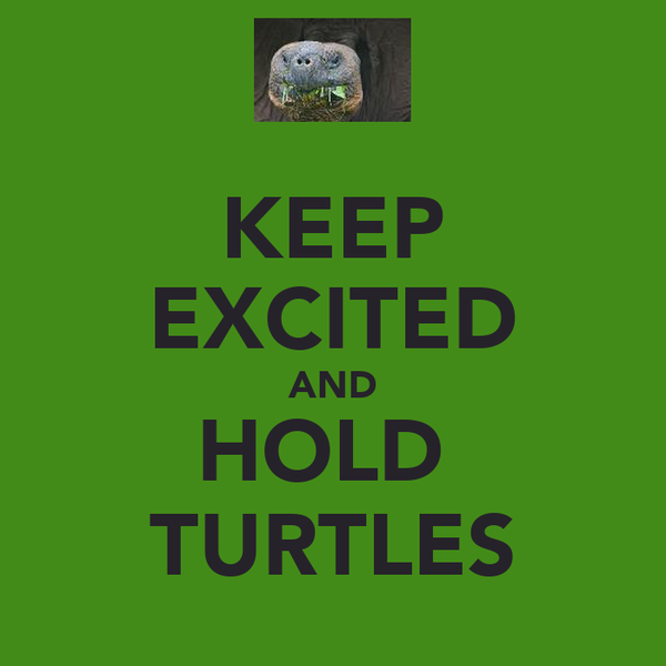 KEEP EXCITED AND HOLD  TURTLES