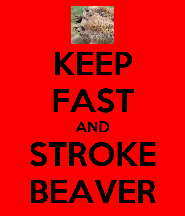 KEEP FAST AND STROKE BEAVER